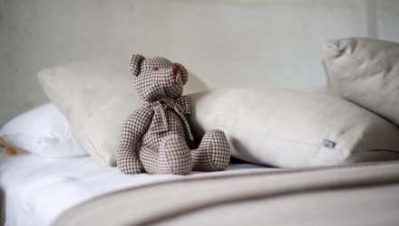 maci az ágyon